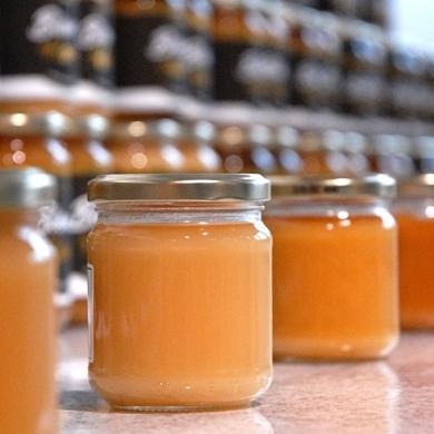 Bild für Kategorie cremiger Honig
